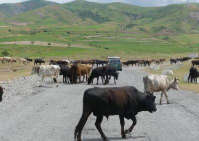 165. De Hulbuk à Kalaikhum - Les Mollalpagas en cavale (4)