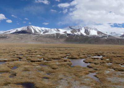 168. M41 de Khorog à Murghab - Les Mollalpagas en cavale (296)