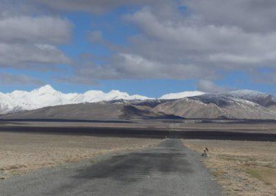 169. M41 de Murghab à Sary Tash (300)