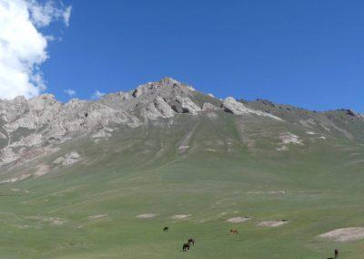 170. Route vers Osh - Les Mollalpagas en cavale (8)