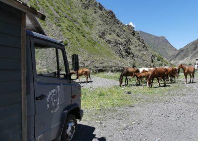 170. Route vers Osh - Les Mollalpagas en cavale (92)