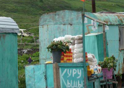 172. Route vers Bishkek - Les Mollalpagas en cavale (104)