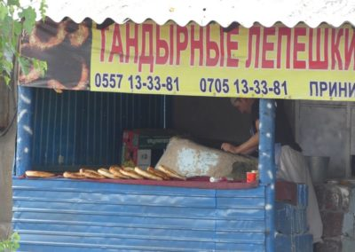 172. Route vers Bishkek - Les Mollalpagas en cavale (148)