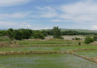 172. Route vers Bishkek - Les Mollalpagas en cavale (2)