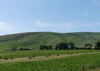 172. Route vers Bishkek - Les Mollalpagas en cavale (4)