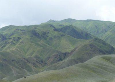 172. Route vers Bishkek - Les Mollalpagas en cavale (53)