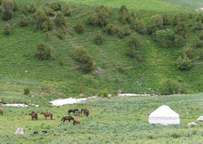 172. Route vers Bishkek - Les Mollalpagas en cavale (78)