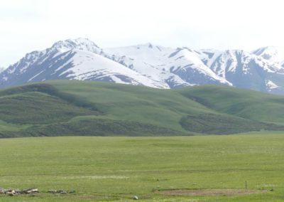 172. Route vers Bishkek - Les Mollalpagas en cavale (94)