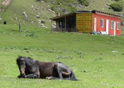 175. Issyk Kul - Les Mollalpagas en cavale (513)