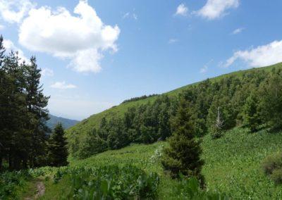 177. Almaty - Les Mollalpagas en cavale (56)