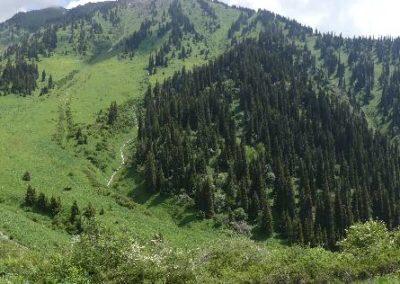 177. Almaty - Les Mollalpagas en cavale (60)
