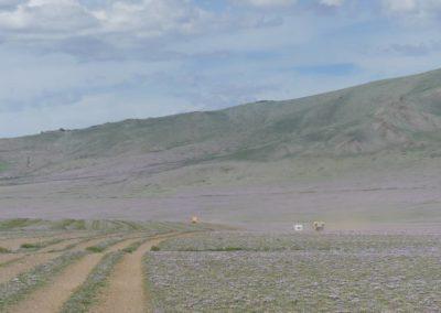 182. Itinéraire A2 - Les Mollalpagas en cavale (369)