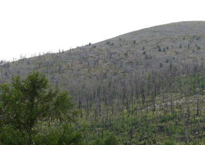 191. T3 de Tosontsegel à Tariat - Les Mollalpagas en cavale (230)
