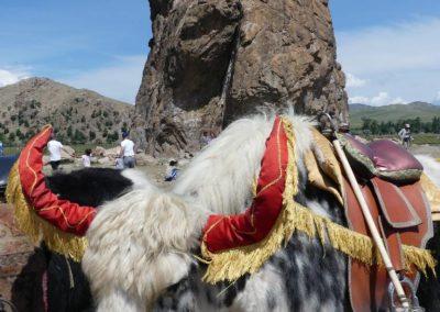 194. K4 Vallée de la Tamir - Les Mollalpagas en cavale (168)