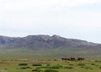 197. Route vers Elsen Tasarkai - Les Mollalpagas en cavale (4)
