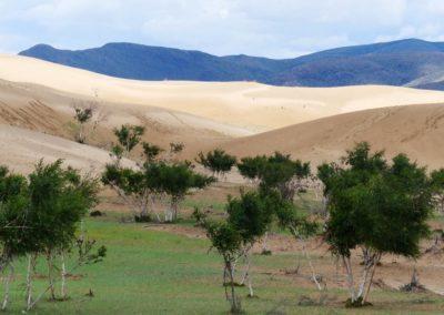 198. Dunes d'Elsen Tasarkai - Les Mollalpagas en cavale (13)