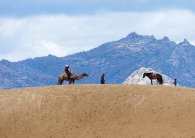 198. Dunes d'Elsen Tasarkai - Les Mollalpagas en cavale (16)