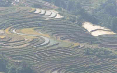 45. Chine : du 21 au 29 septembre 2019 : Fenghuang, Yangshuo, Yuanyang