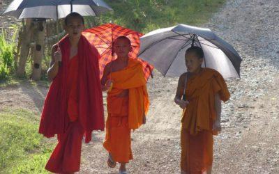 46. Laos : du 30 septembre au 7 octobre 2019 : Boten, Louang Namtha, Lee, Nong Khiaw