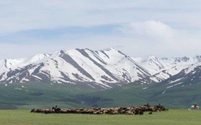 31. Kirghizistan : du 28 mai au 8 juin 2019 : Sary Tash, Osh, Bichkek, Ala Archa, Issyk-Kul, Canyon de Shazka