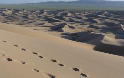 40. Mongolie : du 8 au 16 août 2019 : désert de Gobi