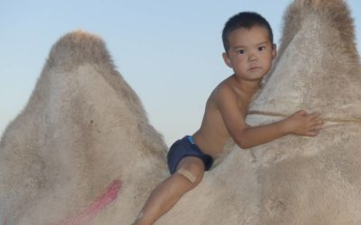 41. Mongolie : du 17 au 31 août 2019 : Oulan Bator, Bogdkhan Uul, Manzshir Khiid, Tsetsee Gun Uul, Genghis Khan, Gorkhi-Terelj, Khamaryn