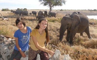113. Namibie : du 27 mai au 1er juin 2021 : Etosha (2ème partie)