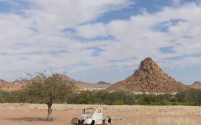 117. Namibie : du 26 juin au 2 juillet 2021 : Cape Cross, Brandberg, EHRA, Twyfelfontein, Forêt pétrifiée